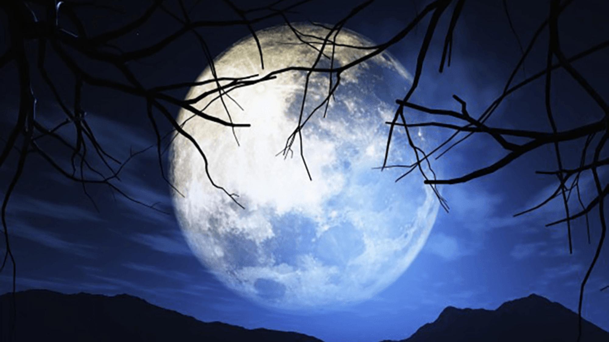 Lua de signo